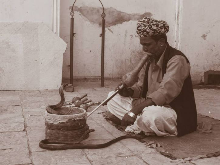 Flute player with Snake in Jaipur